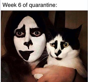 Cat Makeup Face Quarantine