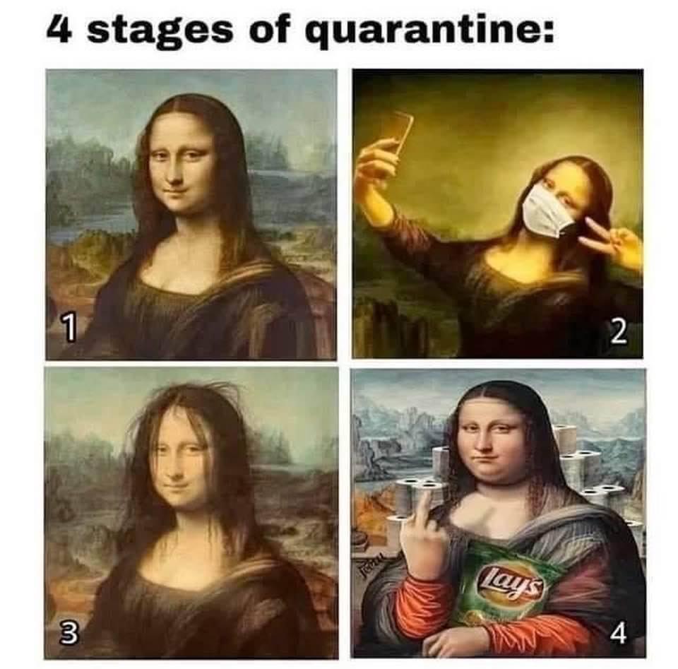 Mona Lisa Coronavirus Evolution