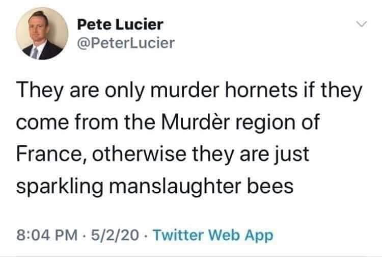 Murder Hornets Terroir