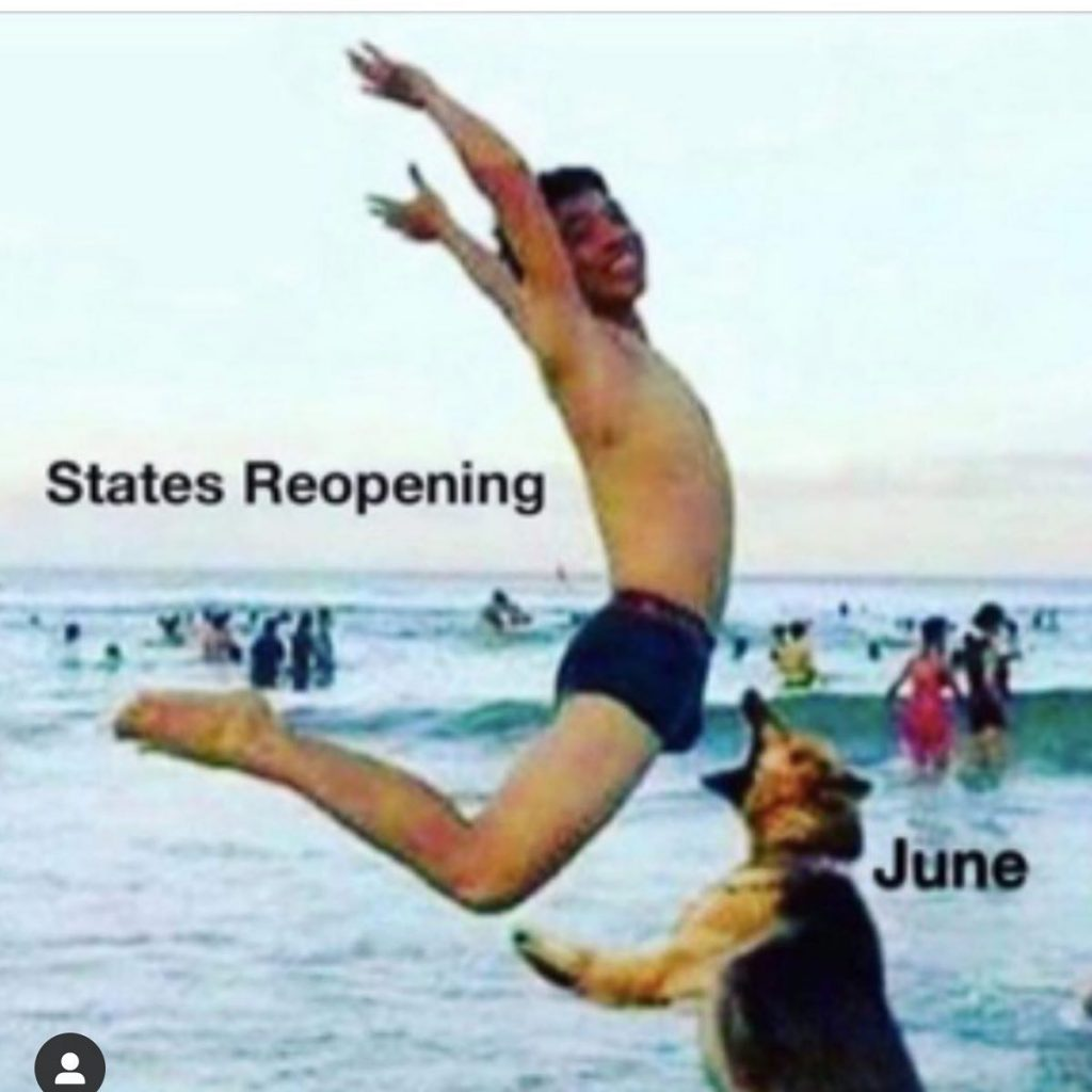 States Reopening Dog Bite